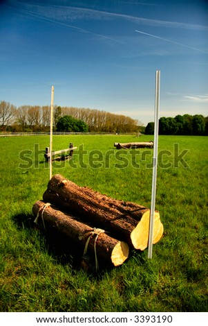 Horse jump in a field - stock photo