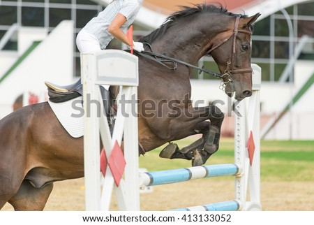 Horse jumping over an obstacle. - stock photo