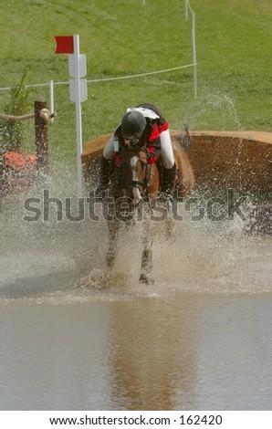 Horse Makes Splash Landing - stock photo
