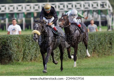 Horse race at hippodrome - stock photo