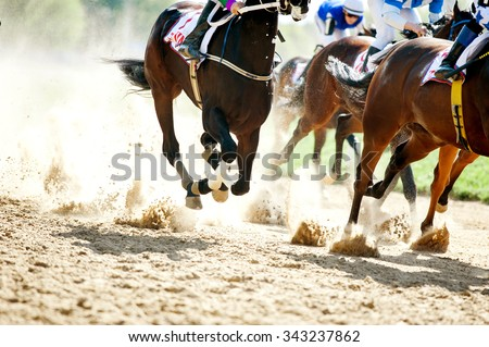 horse racing details of galloping horses legs on hippodrome track - stock photo