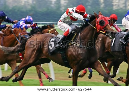 Horse racing game. - stock photo