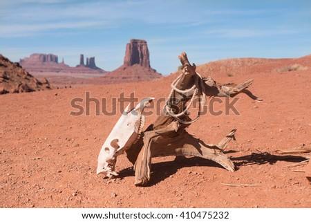 Horse scull hanging on dry log on deserted land, Arizona, USA - stock photo