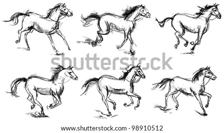 Horse. Set. Hand-drawn. Phase of the movement - stock photo