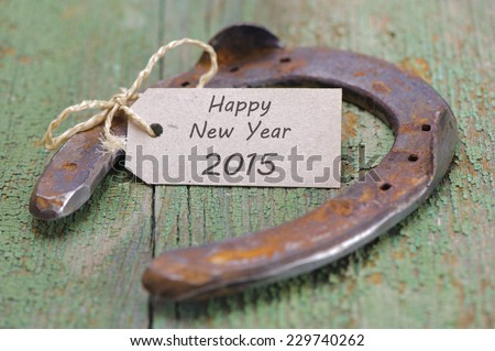 horse shoe as talisman for new year  - stock photo