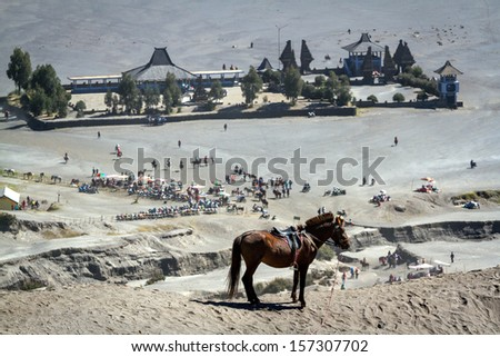 Horse stand in front of bromo temple in Jawa, Indonesia - stock photo