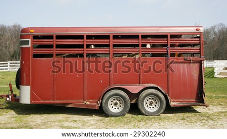 horse trailer with horses inside