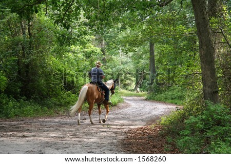 Horseback Rider - 3 - stock photo