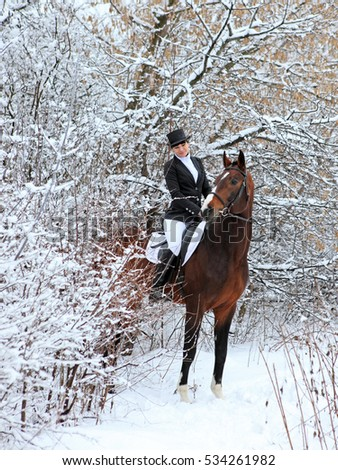 Horseback - woman riding a horse. Horse and equestrian girl in winter outside
