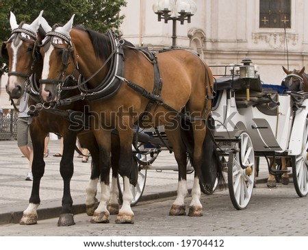 Horses and carriage in Old Town Square,Prague. - stock photo