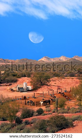 Horses in corral with moon rising in Sonora desert - stock photo