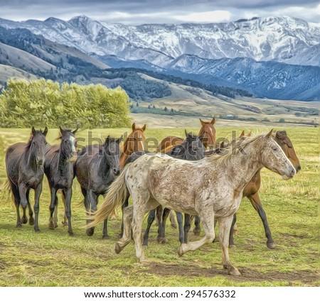 Horses in Montana foothills, photo art - stock photo