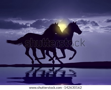 Horses running at sunset - stock photo