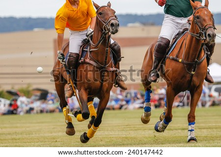 Horses running in a polo match. - stock photo