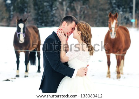 Horses staring at a bride and groom in the winter - stock photo