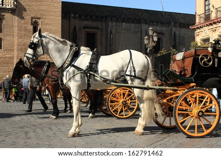 horses with vintage carriages - stock photo