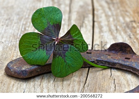 horseshoe and four leaf clover on wood