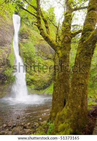 Horsetail Falls - stock photo