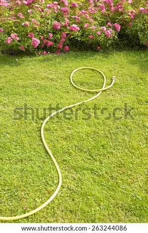 hose on the grass - stock photo