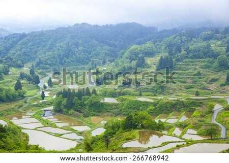 Hoshitouge Rice Terrace, Niigata, Japan - stock photo