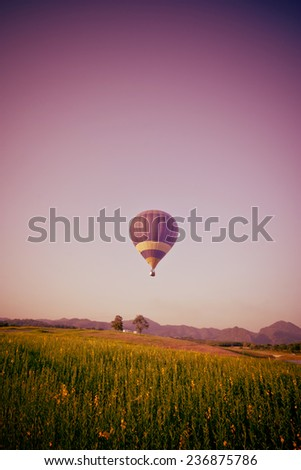 Hot air balloon flying over yellow flowers fields on blue sky  background in old style - stock photo