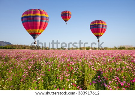 Hot air balloon over cosmos flower with blue sky - stock photo