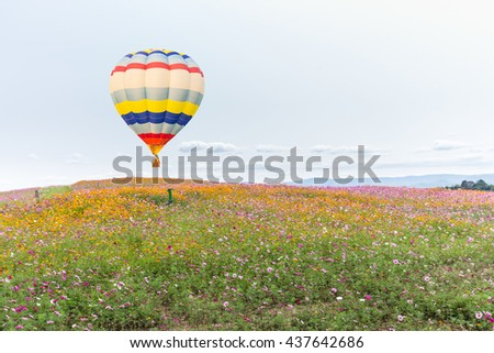 Hot air balloon over cosmos flowers with blue sky - stock photo