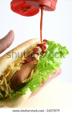 Hot dog with salad, fries and ketchup - stock photo