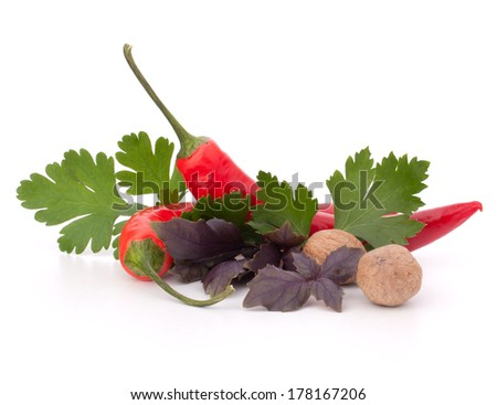 Hot red chili or chilli pepper and aromatic herbs leaves still life isolated on white background cutout - stock photo