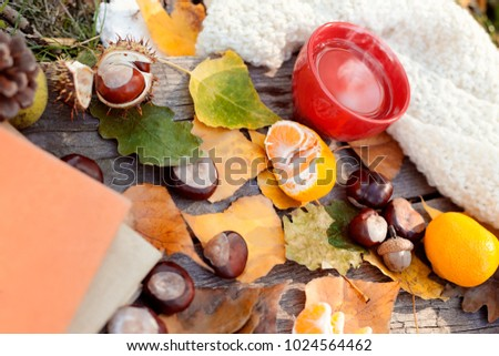 Hot steaming tea, autumn leaves and tangerine, protection from flu
