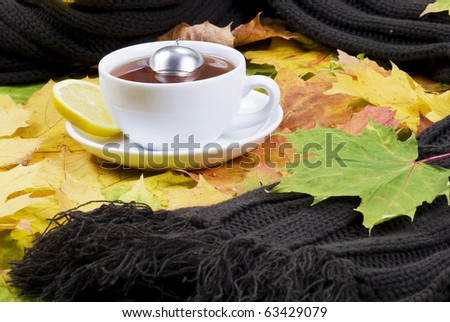 Hot tea on autumn leaves with scarf - stock photo