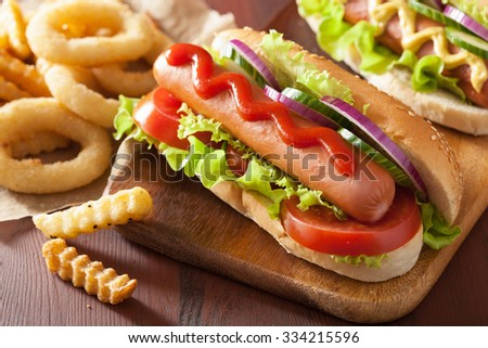 hotdog with ketchup mustard vegetables and french fries - stock photo