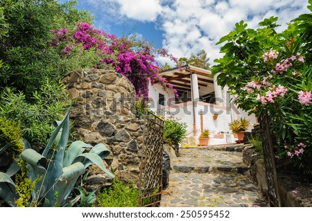 House among flowers in blossom on Alicudi island, Aeolian Islands, Sicily, Italy. - stock photo
