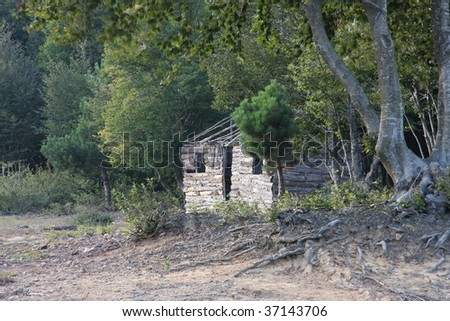 house among the trees - stock photo