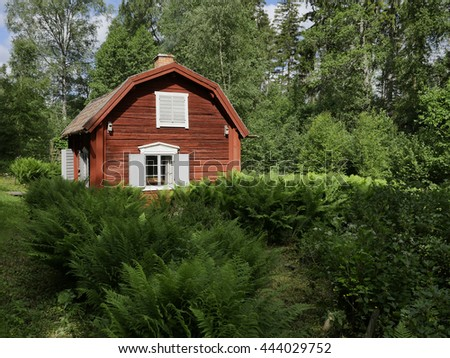House and environment in a midsummer day - stock photo