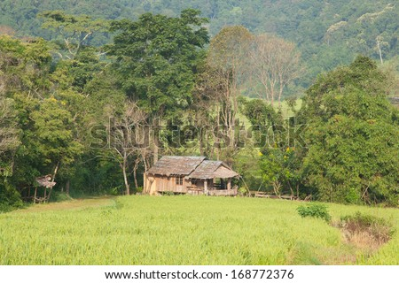House and rice fields Arable farming in the mountain areas Houses and fields on the mountain.