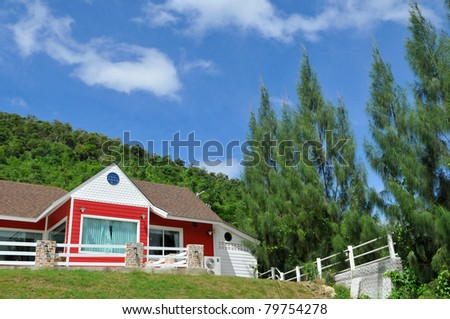 house at sunny day