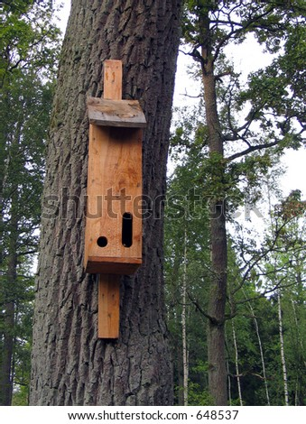 House for bats - stock photo