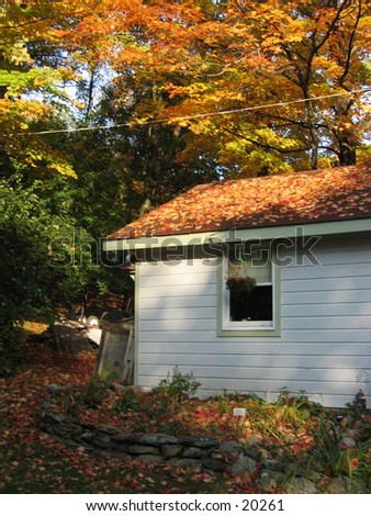 House in the country. - stock photo