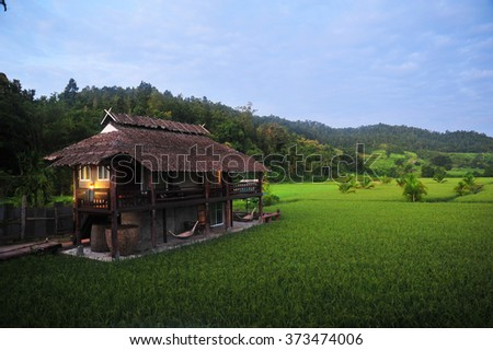 House in The Rice Field - stock photo