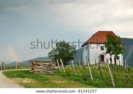 House in the vineyards.Slovenske Konjice, Slovenia - stock photo