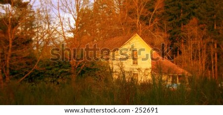 House in the woods. - stock photo