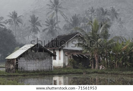 House in tropical forest near pond - stock photo