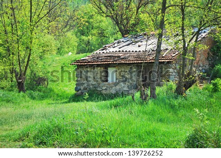 House in woods