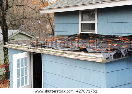 Storm Damage Stock Images Royalty Free Images Amp Vectors