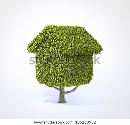House shaped tree isolated on white background - stock photo