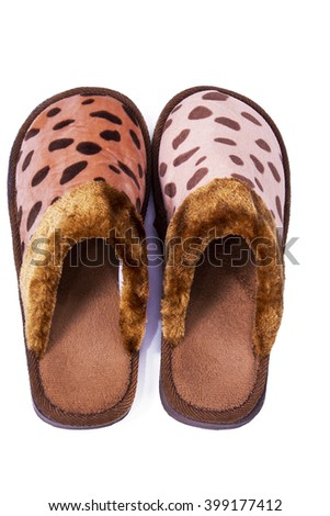 house slippers isolated