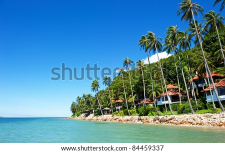 house with palm trees on the beach - stock photo