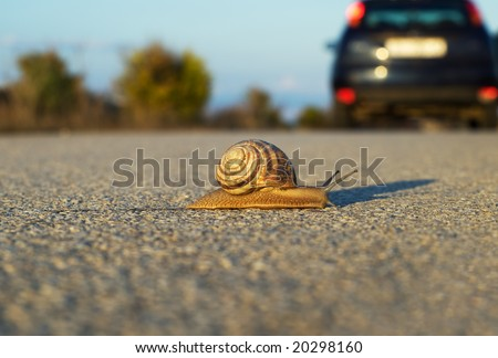 How to survive on that speed!? Metaphor. - stock photo