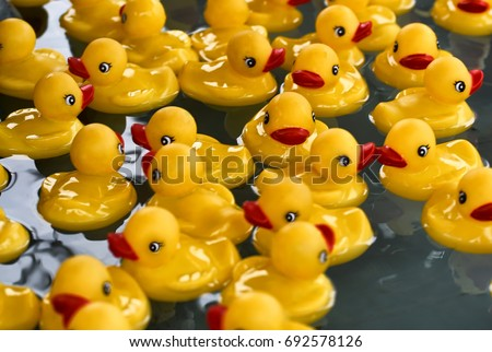 Howard County, Maryland - August 8: Flotilla of rubber ducks with center focus and bokeh edges on 8 August, 2017 at the Howard Country Fair in Howard County, Maryland, USA